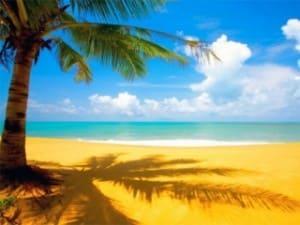 Лето жара - отчет по прибыли