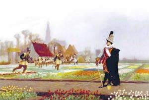 тюльпановая лихорадка в голландии
