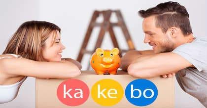 система ведения семейного бюджета kakebo