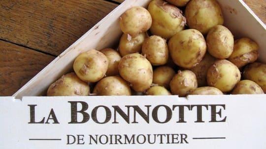 La Bonnotte самый дорогой картофель