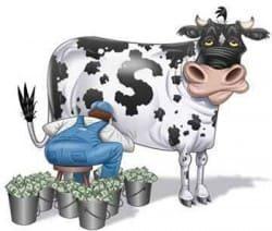 монетизация - заработок в Ютуб