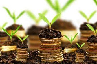 для чего реинвестировать прибыль