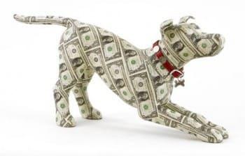 moneydog[1]